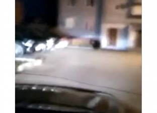 بالفيديو| مطاردة دب داخل حي سكني في مدينة روسية