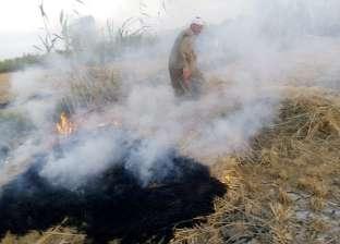 السيطرة على حريق في مزرعة دواجن ببني سويف ونفوق 3 آلاف كتكوت