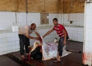 ضبط 14 جزارا مخالفا يذبح خارج المجازر الحكومية بالفيوم