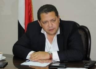 """""""حمودة"""": على القوى السياسية الانتباه للوضع الذي تمر به مصر"""