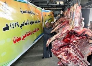 """مسؤول بـ""""الأوقاف"""": توزيع 59 طن لحوم صكوك الأضاحي بـ15 محافظة"""
