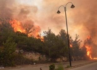 """صور.. سقوط """"أول شهيد"""" من الدفاع المدني بحرائق لبنان"""