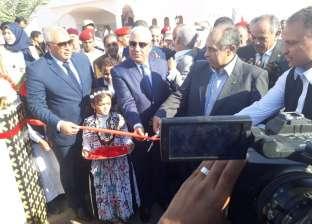 بالصور| وزير الزراعة ومحافظا مطروح والوادي الجديد يفتتحون مهرجان التمور