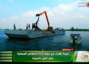 """""""البيئة"""" تشارك في حملة إزالة الأقفاص السمكية بنهر النيل بالبحيرة"""