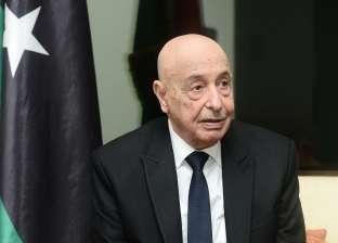 البرلمان الليبي: سنطلب مساندة الجيش المصري حال اختراق سرت