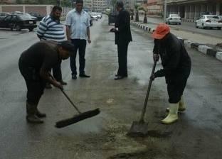 استكمال أعمال تجميل المسطحات الخضراء بزهور بورسعيد