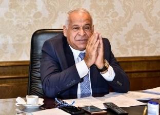 فرج عامر: محطات الطاقة الشمسية تدخل مصر عصر الصناعة العالمية