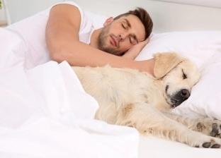 دراسة شملت 962 امرأة: فوائد النوم بجوار كلبك أكثر من شريك حياتك