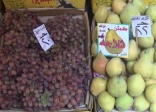 """""""تجارية الفيوم"""": إقامة 4 شوادر لبيع الخضراوات والفاكهة بأسعار مخفضة"""