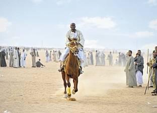 «المرماح».. أهلاً بكم فى كرنفال الخيول العربية الأصيلة