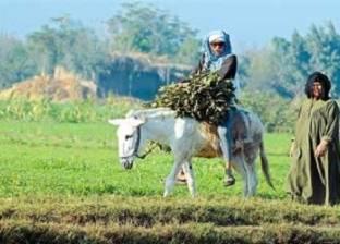محمد زكي بدر أمينا عاما للمجلس القومي لشؤون الفلاحين والمنتجين الزراعيين بالمنوفية
