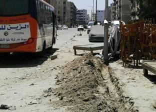 """حملة مكبرة لزرع كابلات الكهرباء بـ""""زهور بورسعيد"""""""