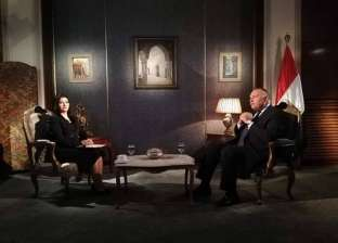 وزير الخارجية: إقامة دولة فلسطين هدف مصر المنشود