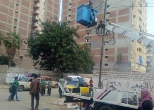بالصور| رفع كفاءة الكهرباء والإنارة بحي المنتزه أول في الإسكندرية