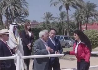 """محمود قاسم: فيفي عبده نقطة ضعف """"مملكة الغجر""""..وعودة حلا شيحة ليست قوية"""