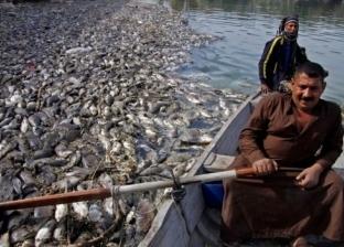 بالفيديو| نفوق الأسماك في العراق.. هل تركيا وإيران السبب