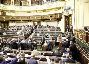 مطالب برلمانية بتعيين أبناء المناطق المقامة عليها مشروعات الكهرباء