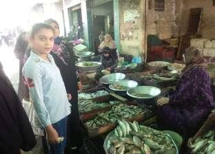 """استمرار حملة مقاطعة الأسماك بكفر الشيخ.. والبائعون: """"نبيع كميات قليلة"""""""
