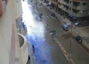 """تنظيف الشوارع وتطهير الشنايش استعدادا للأمطار بـ""""عامرية الإسكندرية"""""""