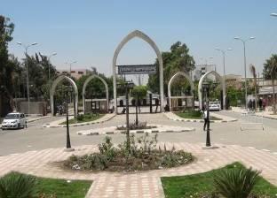 """جامعة المنيا تنظم مؤتمر """"دور الفنون التشكيلية في مواجهة المتغيرات العالمية"""""""