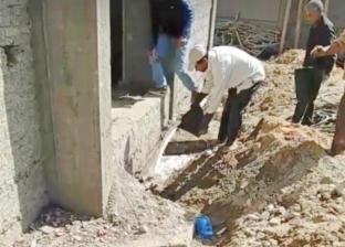 """قلق في الإسكندرية من انتشار النمل الأبيض.. و""""الزراعة"""": تعاملنا مع 130 بلاغا"""