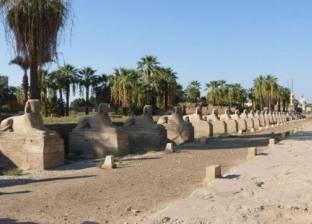 """أمين """"الأعلى للآثار"""": اكتشاف 8 تماثيل جديدة بطريق الكباش بأياد مصرية"""