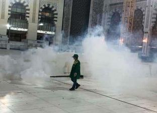 """السعودية تحذر مواطنيها من أكل """"الجراد"""": به مبيدات مسممة"""