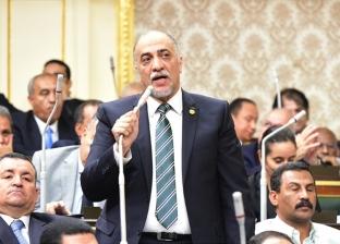 """""""أغلبية النواب"""": الشعب المصري أصبح حائط صد أمام كل المخاطر"""