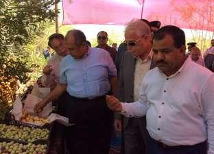 بالصور| وزير الزارعة يتفقد مزرعة أحد الشباب بطور سيناء