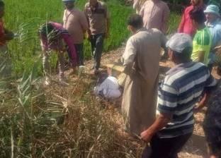 العثور على جثة عامل في حالة تعفن بأرض زراعية بأشمون