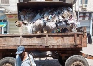 حملات نظافة مكثفة في شوارع دسوق خلال عيد الأضحى