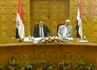 """""""رشوان"""": لا يوجد عداء ضد مصر بالإعلام الدولي بل نقص في عرض الحقائق"""