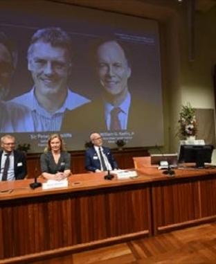 أمريكيان وبريطاني يفوزون بجائزة نوبل في الطب