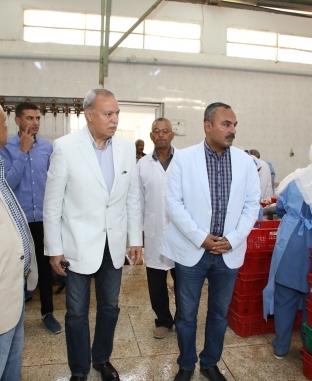 25 ألف دجاجة بمنافذ محافظة قنا