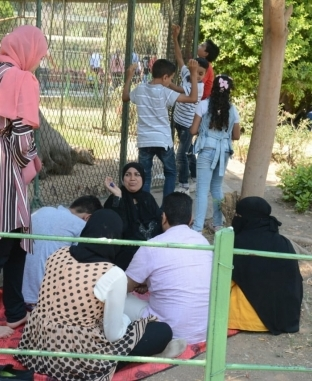احتفالات المصريين في ثاني أيام عيد الأضحى