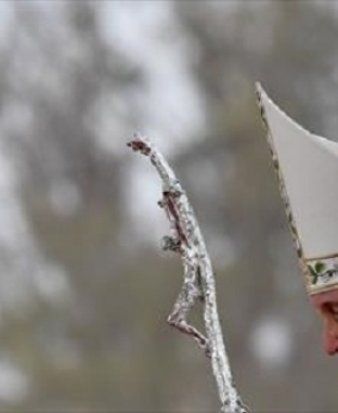 زيارة البابا فرنسيس بابا الفاتيكان لمدغشقر