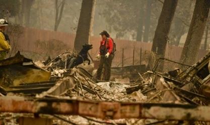 حرائق الغابات في كاليفورنيا الأمريكية