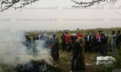 """""""أمن جنوب سيناء"""" يبيد 10 مزارع نباتات مخدرة"""