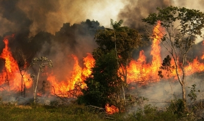 رئيس البرازيل يأمر بنشر الجيش لمكافحة حرائق غابات الأمازون
