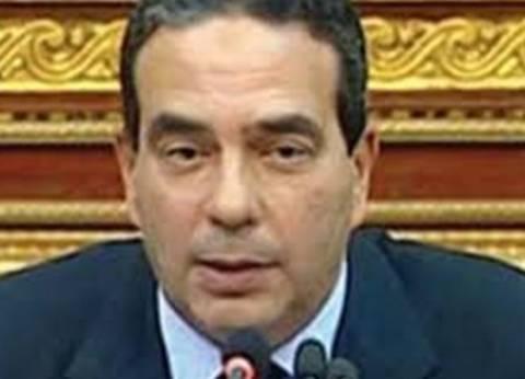 """""""أبو العلا"""" يدعو """"الخطاب الديني"""" والوزارات لمواجهة الأزمة السكانية"""
