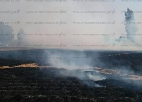 ارتفاع مخالفات حرق قش الأرز في الغربية وكفر الشيخ