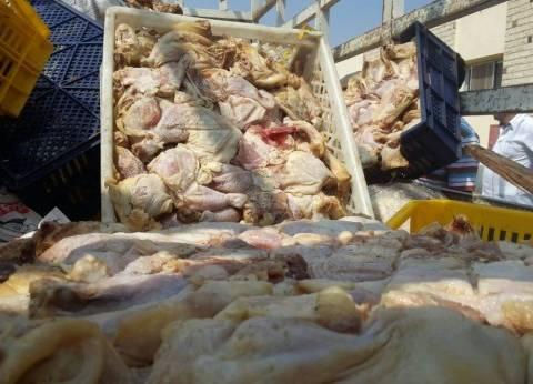 """""""التموين"""": ضبط 500 كيلو دجاج فيليه غير صالح بطنطا"""