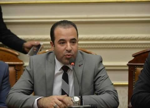 """برلماني: إجراءات المنع من السفر في قانون """"الجريمة الإلكترونية"""" صارمة"""
