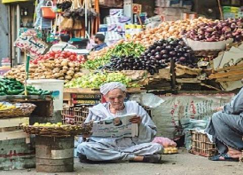 بريد الوطن  أفكار للنهوض بالاقتصاد المصرى