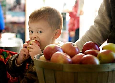 أسعار الفاكهة اليوم الخميس 10/ 1/ 2019.. والتفاح بـ18 جنيها