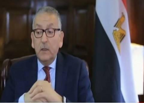 سفير مصر بواشنطن: معدل الإقبال في الاستفتاء اليوم أعلى بكثير من أمس