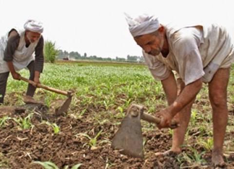 «المستقلة للفلاحين»: نحذِّر من التلاعُب فى تعويضات السيول ومعظم المتضررين غير مسجلين