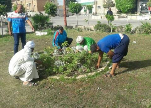 بالصور| تجميل الحدائق بمركز ومدينة برج العرب غرب الإسكندرية