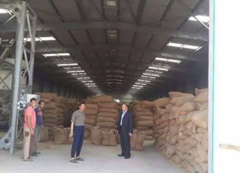 توريد 145 ألف طن من محصول القمح لـ15 موقع استلام بالفيوم