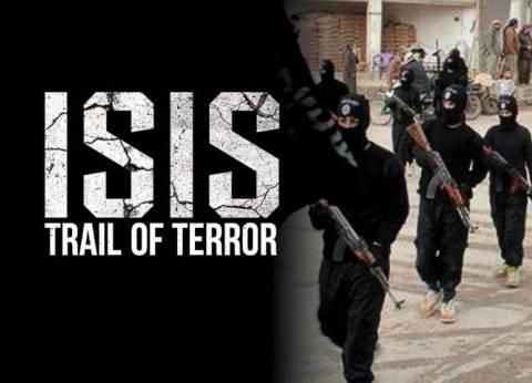 """بريطانيا: المملكة المتحدة تعتبر مصر شريكا عسكريا هاما في الحرب ضد """"داعش"""""""